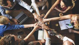 tőke befektető szerzőés kezdő induló, fejlődő vállalkozási szakaszban